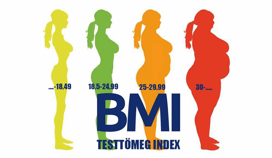 WELLION | Testtömeg-Index (BMI) |